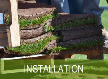 NorthlandTurf-Installation